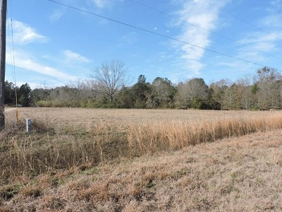 Cook County Residential Lots & Land For Sale: 16 Candler Court