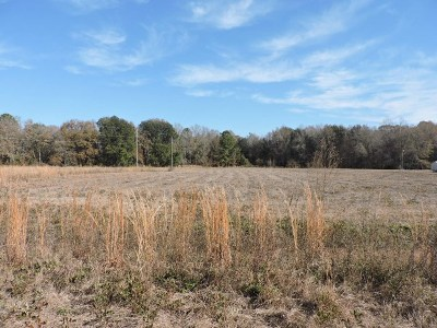 Cook County Residential Lots & Land For Sale: 17 Candler Court
