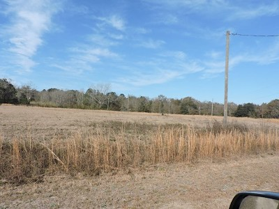 Cook County Residential Lots & Land For Sale: 21 Candler Court