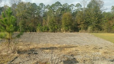 Lanier County Residential Lots & Land For Sale: 8 Palmetto Circle