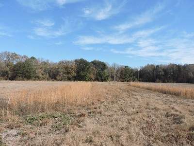 Cook County Residential Lots & Land For Sale: 25 Haley Court