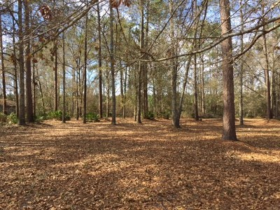 Brooks County Residential Lots & Land For Sale: 152 Parkview Dr