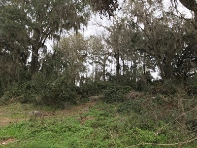 Berrien County, Lanier County, Lowndes County Residential Lots & Land For Sale: 5141 Cypress Drive