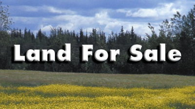 Brooks County Residential Lots & Land For Sale: 230 Pine Forest Drive