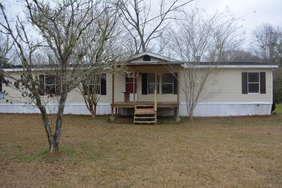 Hahira Single Family Home For Sale: 8422 Old Valdosta Road