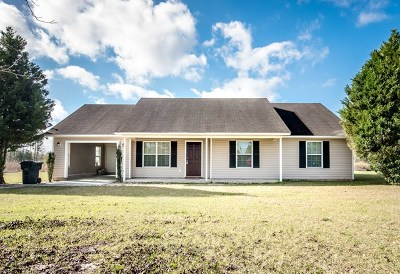 Berrien County, Brooks County, Cook County, Lanier County, Lowndes County Single Family Home For Sale: 125 Piney Lane