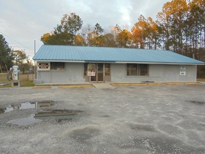 Lowndes County Commercial For Sale: 2295 New Statenville Hwy