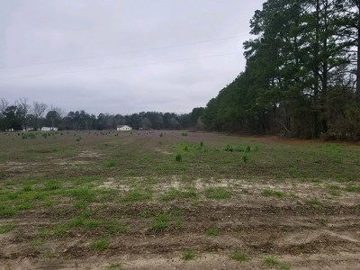 Berrien County Residential Lots & Land For Sale: Lot Highway 82