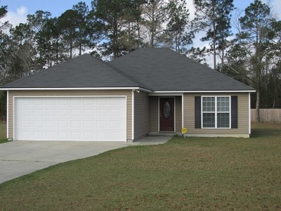 Berrien County, Brooks County, Cook County, Lanier County, Lowndes County Single Family Home For Sale: 313 Baskins