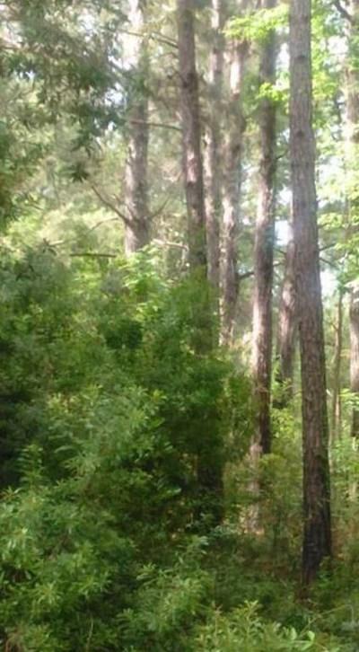 Berrien County Residential Lots & Land For Sale: 579 Eddye