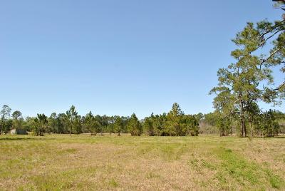 Valdosta GA Commercial Lots & Land For Sale: $400,000