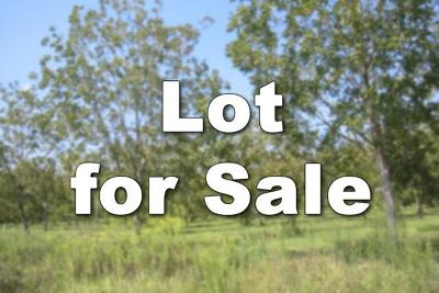 Brooks County Residential Lots & Land For Sale: Reddick Street
