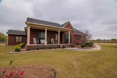 Valdosta Single Family Home For Sale: 3300 Orr Rd