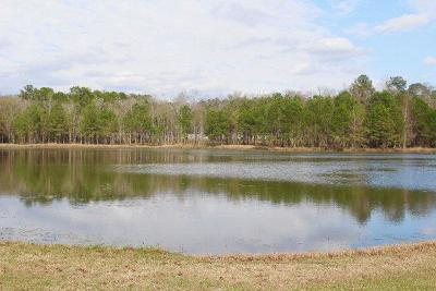 Berrien County, Lanier County, Lowndes County Residential Lots & Land For Sale: 4450 Green Island