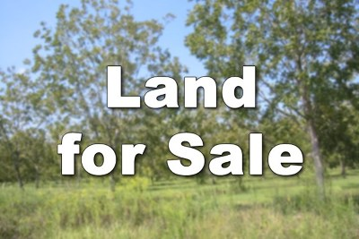 Lanier County Residential Lots & Land For Sale: 74 Brookfield Drive