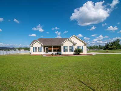 Berrien County, Brooks County, Cook County, Lanier County, Lowndes County Single Family Home For Sale: 3344 Possum Creek Rd