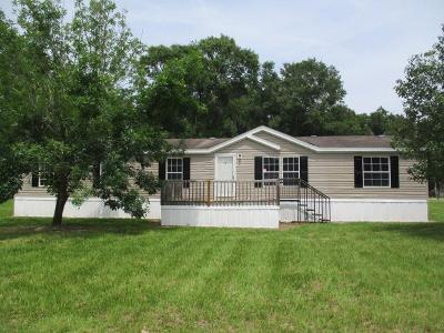 Berrien County, Brooks County, Cook County, Lanier County, Lowndes County Single Family Home For Sale: 88 Barber Road
