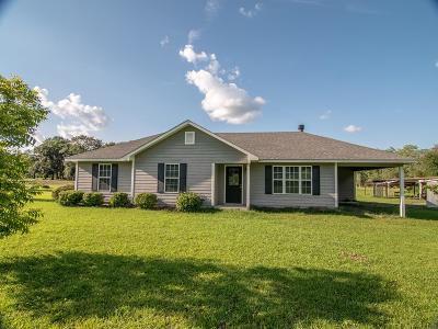 Berrien County, Brooks County, Cook County, Lanier County, Lowndes County Single Family Home For Sale: 2015 Luke Rd