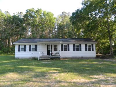 Berrien County, Brooks County, Cook County, Lanier County, Lowndes County Single Family Home For Sale: 255 Bluebird Lane