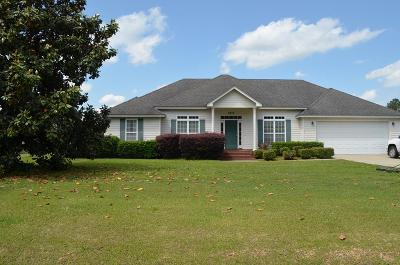 Valdosta Single Family Home For Sale: 3873 Darian Dr