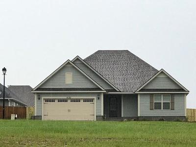 Berrien County, Brooks County, Cook County, Lanier County, Lowndes County Single Family Home For Sale: 4182 Parker Trail