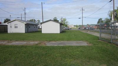 Lakeland GA Commercial For Sale: $39,900