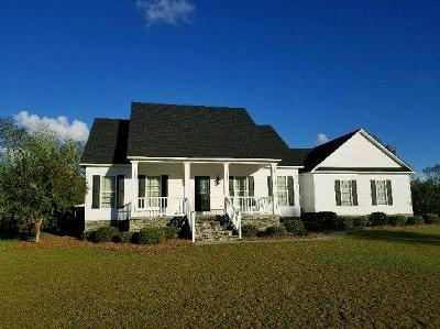 Berrien County, Brooks County, Cook County, Lanier County, Lowndes County Single Family Home For Sale: 59 McKentson Lane