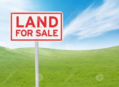 Residential Lots & Land For Sale: 4011 Liska Circle