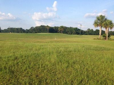 Cook County Residential Lots & Land For Sale: Lot 19 Circlestone Drive
