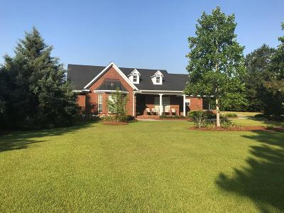Berrien County, Brooks County, Cook County, Lanier County, Lowndes County Single Family Home For Sale: 300 White Pond Road