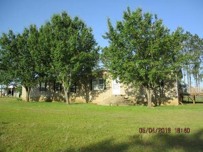 Berrien County, Brooks County, Cook County, Lanier County, Lowndes County Single Family Home For Sale: 673 Horseshoe Bend