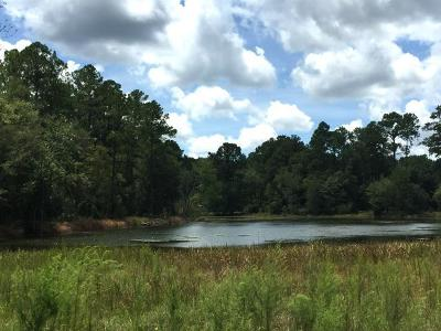 Berrien County, Lanier County, Lowndes County Residential Lots & Land For Sale: 4251 Louis Drive