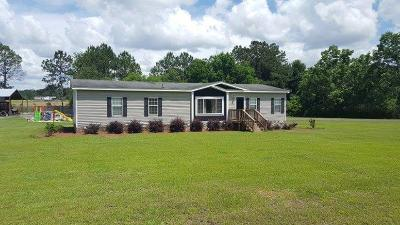 Berrien County, Brooks County, Cook County, Lanier County, Lowndes County Single Family Home For Sale: 3070 Edgar Drew Dorminey Road