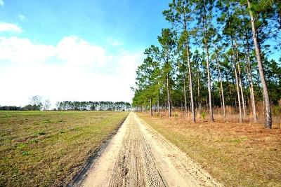 Berrien County, Lanier County, Lowndes County Residential Lots & Land For Sale: 6938* Simpson Rd