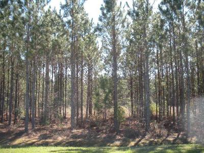 Berrien County, Lanier County, Lowndes County Residential Lots & Land For Sale: 109 Boyette Road