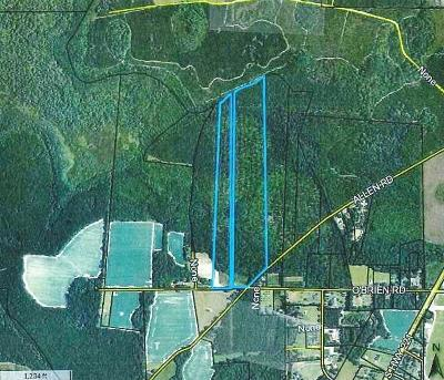 Lakeland GA Commercial Lots & Land For Sale: $139,900