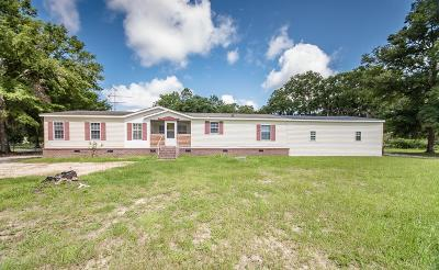 Valdosta Single Family Home For Sale: 4000 Twin Oaks Road