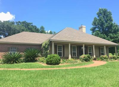 Berrien County, Brooks County, Cook County, Lanier County, Lowndes County Single Family Home For Sale: 5048 Cypress Lake Drive