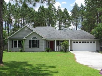 Berrien County, Brooks County, Cook County, Lanier County, Lowndes County Single Family Home For Sale: 60 Live Oak Trail