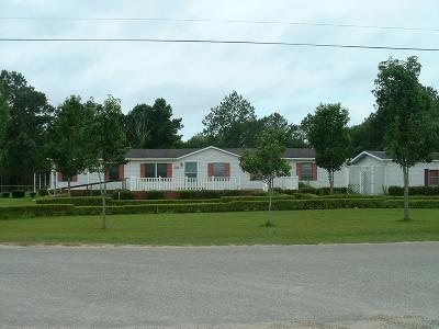 Adel Single Family Home For Sale: 255 Steven Lane