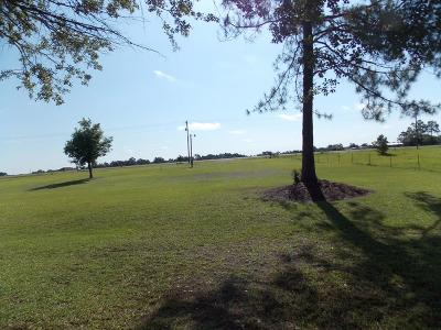 Brooks County Residential Lots & Land For Sale: 4888 Valdosta Hwy