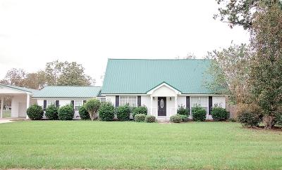Berrien County, Brooks County, Cook County, Lanier County, Lowndes County Single Family Home For Sale: 3708 Black Gum Drive