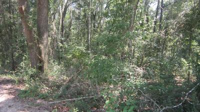 Lakeland GA Commercial Lots & Land For Sale: $25,000