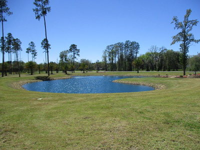 Lanier County Residential Lots & Land For Sale: 1295 S Hwy 129