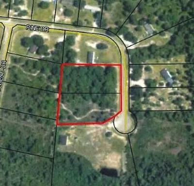Lanier County Residential Lots & Land For Sale: 100 Pine Drive