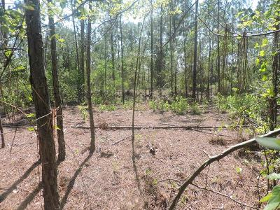 Residential Lots & Land For Sale: Tbd W Robert Day Road