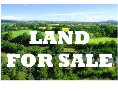 Residential Lots & Land For Sale: 3520 Spence Dr.