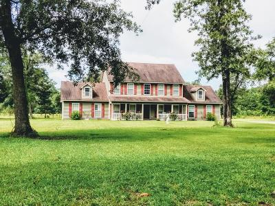 Berrien County, Brooks County, Cook County, Lanier County, Lowndes County Single Family Home For Sale: 5540 Santa Claus Lane