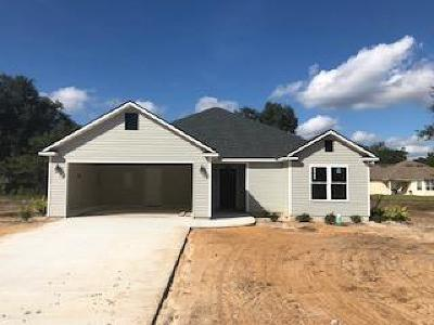 Berrien County, Brooks County, Cook County, Lanier County, Lowndes County Single Family Home For Sale: 4534 Caleb Creek