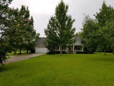 Nashville Single Family Home For Sale: 804 Andy Street